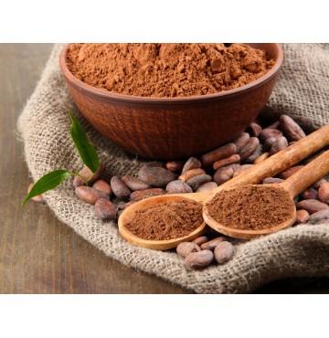 Polvo de Cacao Ecológico 500g