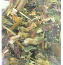 Equinacea, bandeja 100 gramos