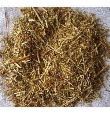 Hipericon o hierba de San Juan, bandeja 100 gramos