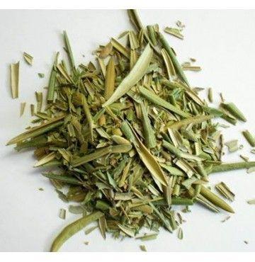 Olivo hojas, bandeja 50 gramos