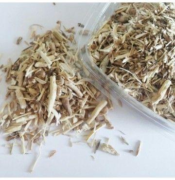 Achicoria raíz cortada, bandeja 100 gramos