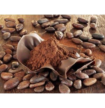 Granos de Cacao Orgánicos 250g